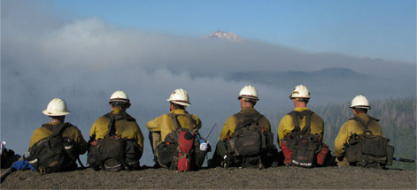 firestorm Company workers in forest fire working firefighting