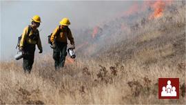 Firestorm overview video watch