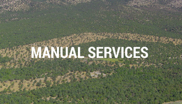Manual services