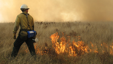 controlled-burning